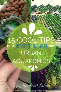 Ebook Cover2 of 15 Cool Tips to Succeeding with Urban Aquaponics by Maribou Latour