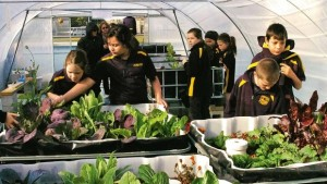 53:  Bringing Aquaponics to New Zealand Schools~ Diana Fitzsimmons & Amanda Jones from Wairakei Primary School, New Zealand